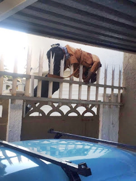 Sad Way to Die? Robber Meets His Doom as He Got Stuck in a Sharp Metal Fence After Robbery (Photos)