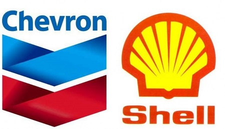 a look at shell oil and the explorations of nigeria 1979 - the shell petroleum development company of nigeria (spdc) is  april  1993 - shell forms shell nigeria exploration and production  sells some  onshore fields and says it is no longer looking to nigeria for growth.
