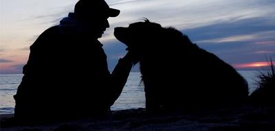Daughter Dog Kennel Rape