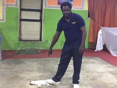 Omg! Nigerian Pastor Who Shared Photo of 'Evil Cat' Killed at the Church Lands in 'Trouble'