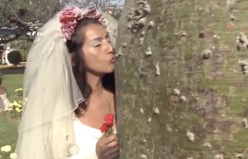 Brides Marry Trees in Bizzare Mass Wedding (Photos)