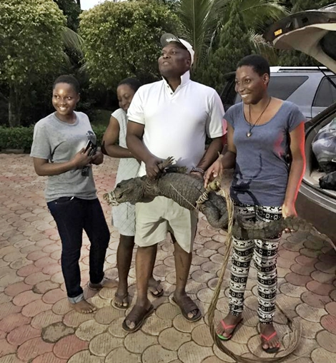 What A Present! See The Crocodile A Nigerian Dad Bought