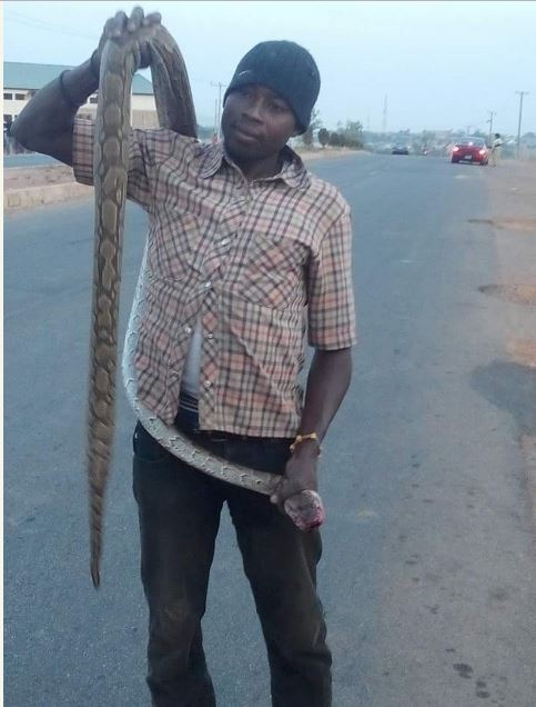 Friday Pepper Soup: See the Massive Snake Paraded on the Street by this Young Man (Photos)