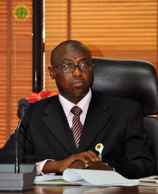 NNPC, Agip to Add Extra 480mw of Electricity to National Grid by 2019 - Baru