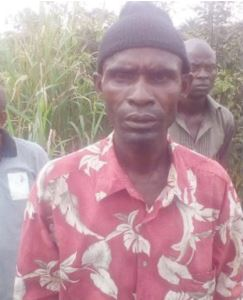 Inside the Dreaded Igwebuike Forest In Imo Where People Are Murdered And Buried