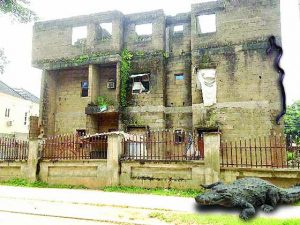 Inside Abuja Uncompleted Buildings Where Nigerians Live With Reptiles And Strange Animals