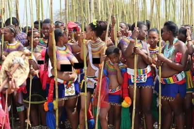 The eye newspaper 2017 zulu virgin annual reed dance in south if the reed should break before the girl reaches that point it is considered a sign that the girl has already been sexually active ccuart Image collections