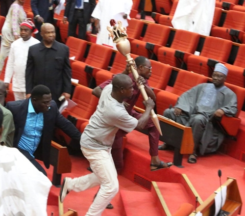 See Faces Of The 'Thugs' Who Snatched The Senate's Mace (Photos)