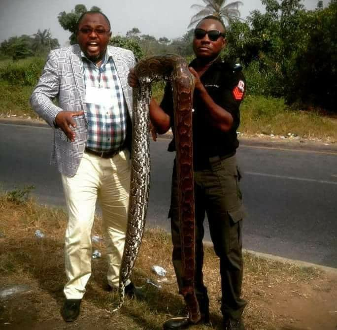 Nigerian Police officer poses With Huge Python in Abuja (Photo)