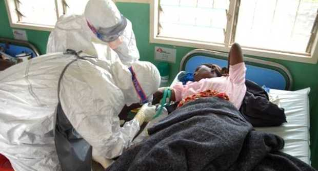 Nigerian Institute Develops Herbal Drugs For Ebola, Malaria