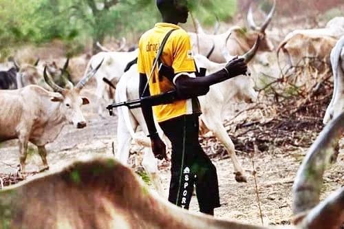 Tackle The Killer Herdsmen Yourselves - FG Asks States, Dumps Cattle Colonies