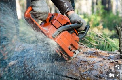 Shocker: Father-Of-3 Cuts His Own Throat Open With A Chainsaw While Pruning A Tree