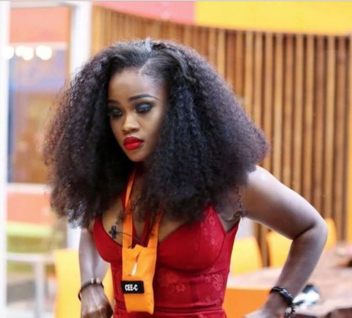 BBNaija: I Had A Dream Some Evicted Housemates Returned To The House - Cee-C