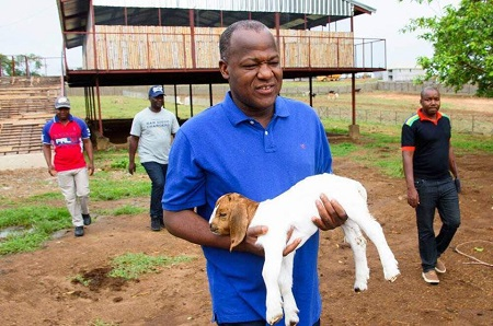 Speaker Yakubu Dogara Spotted Spending Time With His Goat After Visiting His Farm (Photos)