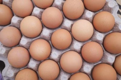 [Image: egg.jpg]