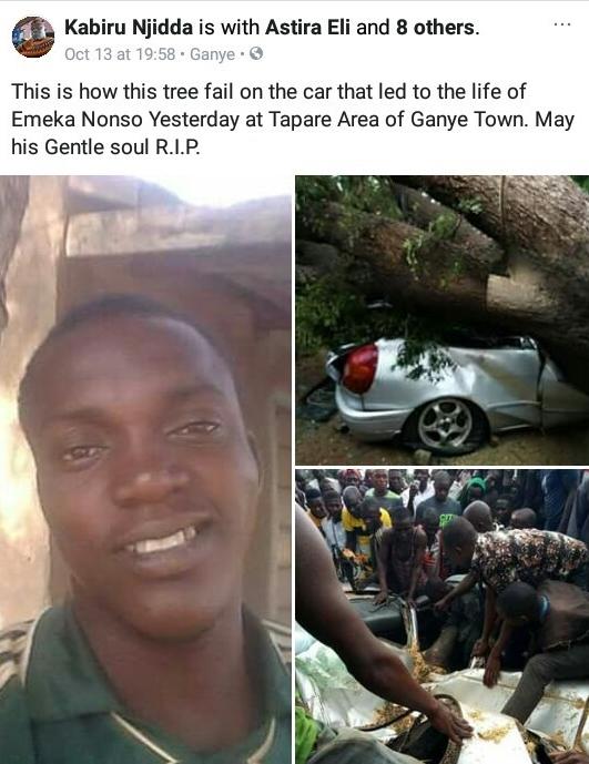 [Image: accident-tree-car-4.jpg]