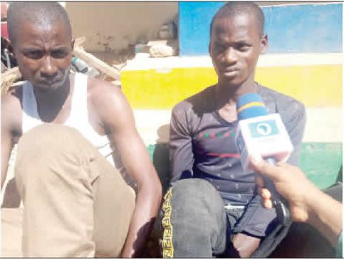 Gombe kidnappers