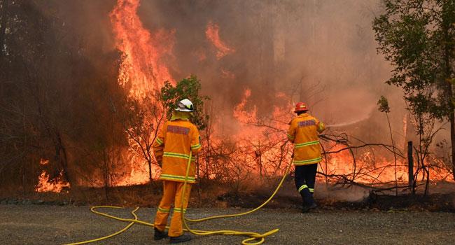 Australia firefighter dies