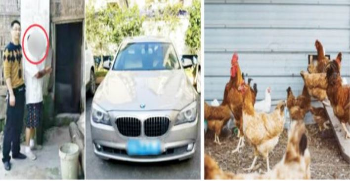 Man Steals Chickens To Buy Fuel For His N140m BMW Car
