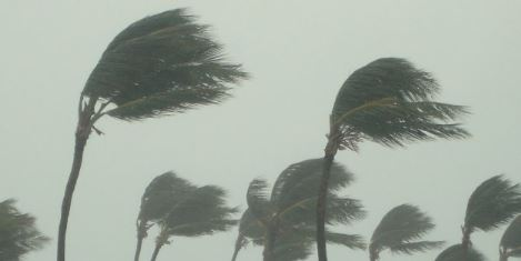 Windstorm Destroys 1,536 Rooms In Four Jigawa LGAs