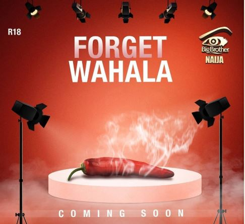 Big Brother Naija 2019: What To Expect From Contestants At This Year's Show