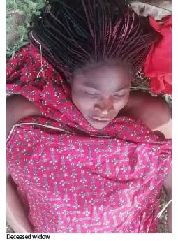 kidnappers murder widow