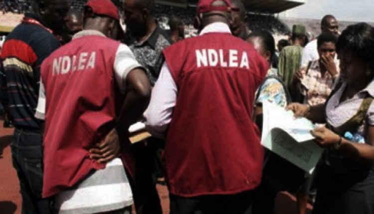 Boko Haram drug supplier
