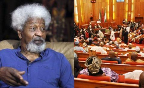 Prof Wole Soyinka, senate