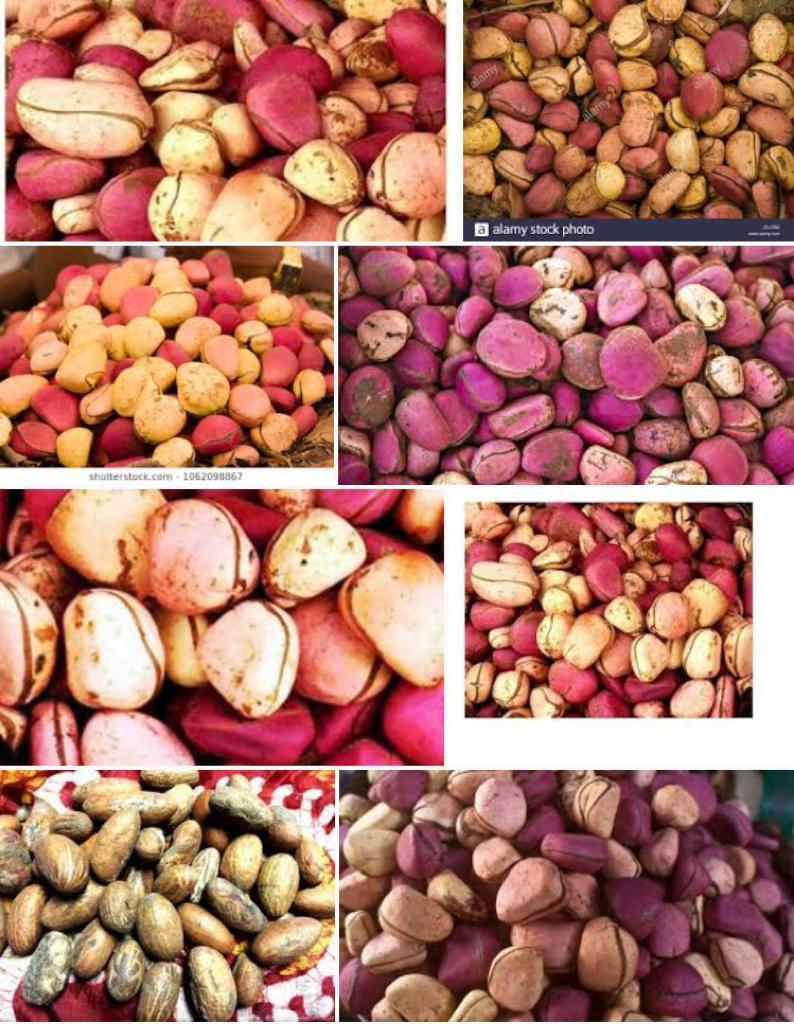 kolanuts