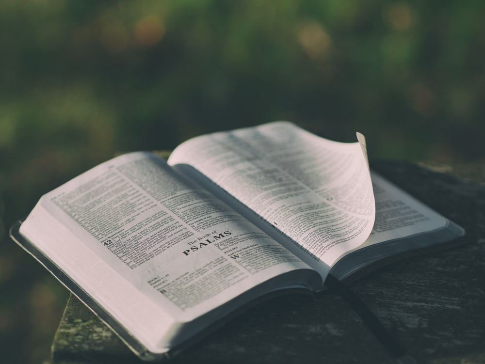 Pidgin Bible