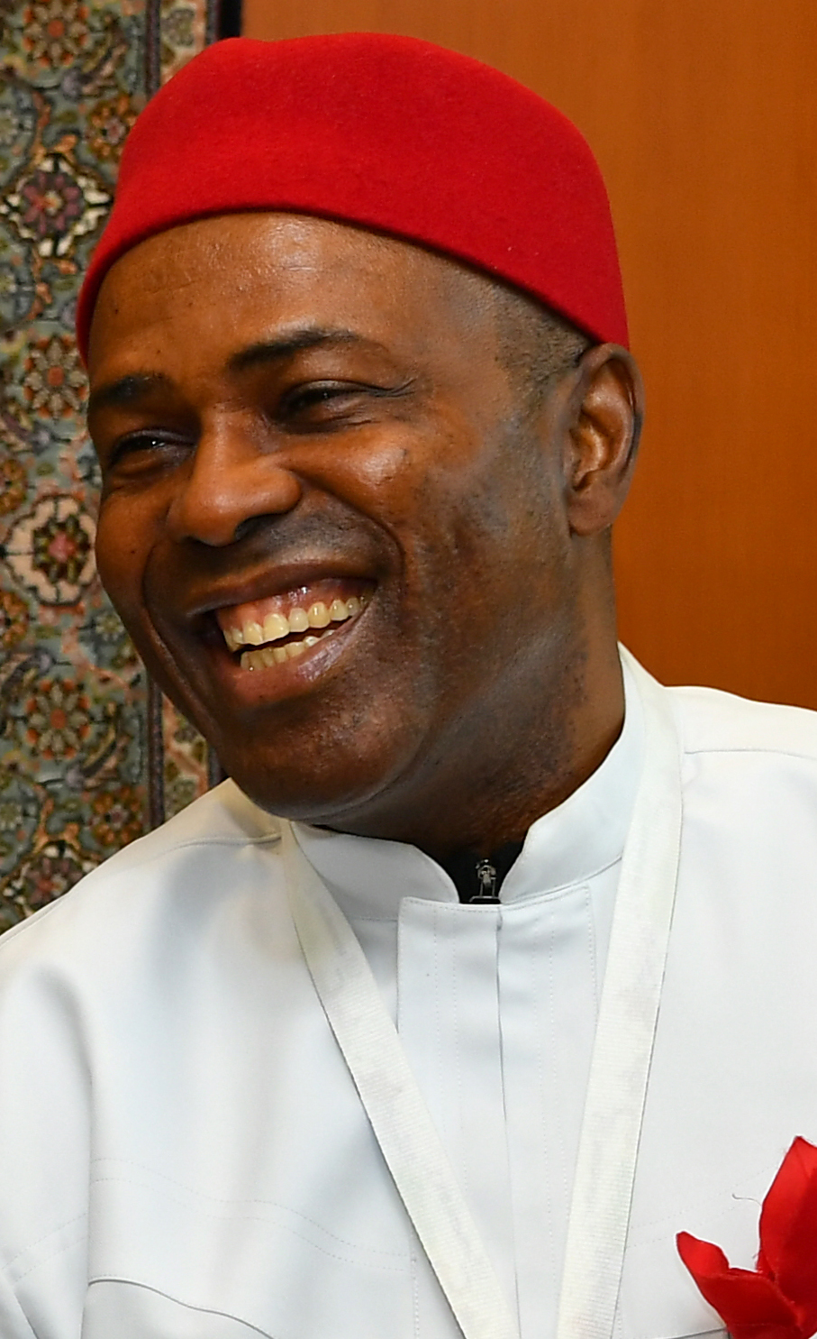 Minister of Science and Technology, Dr. Ogbonnaya Onu
