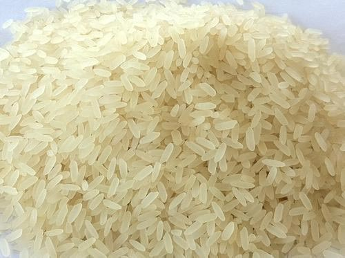 Border Closure: We Can Produce Enough Rice To Feed Nigerians - Rice farmers  | Nigeria Newspaper - Latest Nigeria News paper