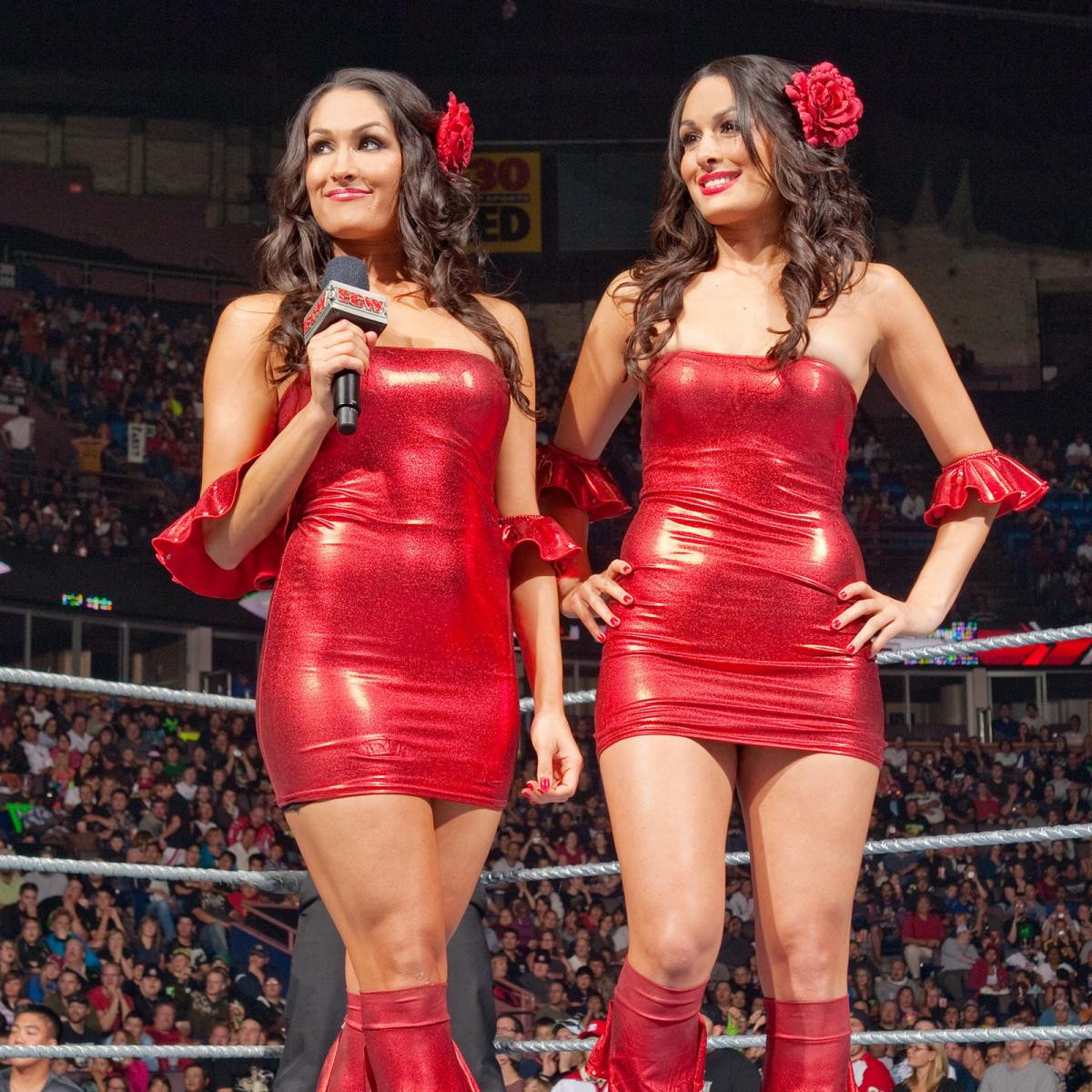 WWE twins and reality stars, Brie and Nikki Bella