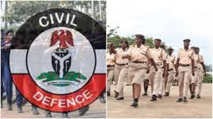 Nigeria Security and Civil Defence Corps, Nigeria Immigration Service
