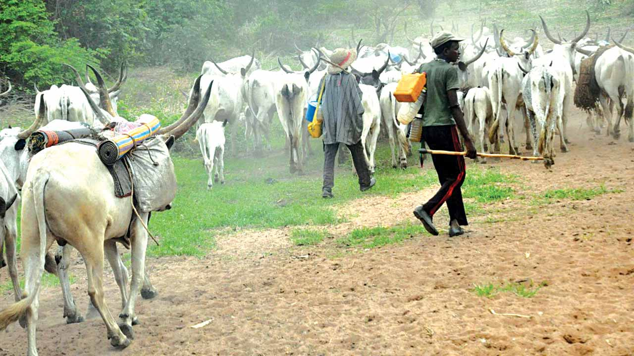 3 Herdsmen Killed In Anambra, 2 Community Leaders Detained