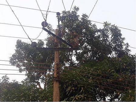 man electrocuted