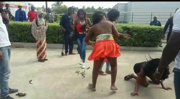 fighting ladies