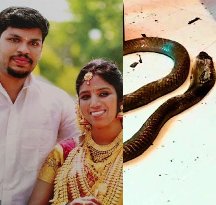 Sooraj killed his wife with a snake