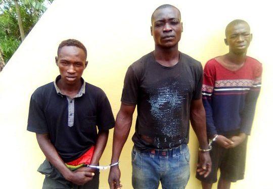 Kidnappers arrested in Ogun