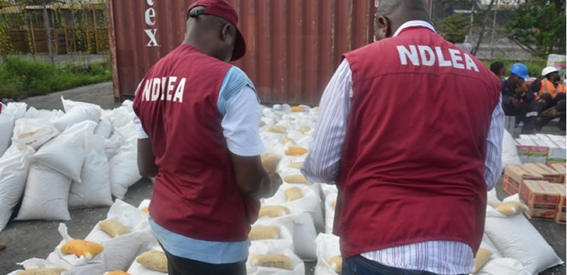 Drama As NDLEA Nabs Wanted Abia Major Drug Supplier With Over 100kg Cocaine, Cannabis