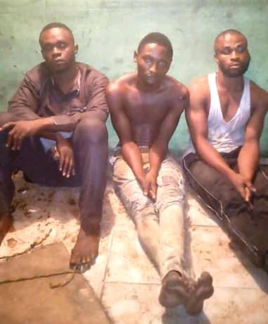 Robbers arrested in Port Harcourt