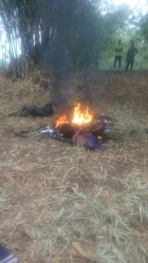 The armed robbers after being set ablaze in Imo