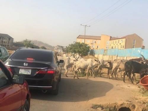 Abuja road