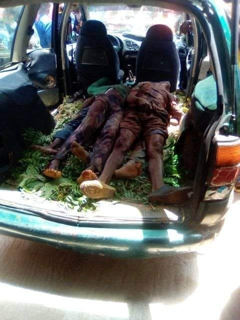 Herdsmen kill farmers in Benue state