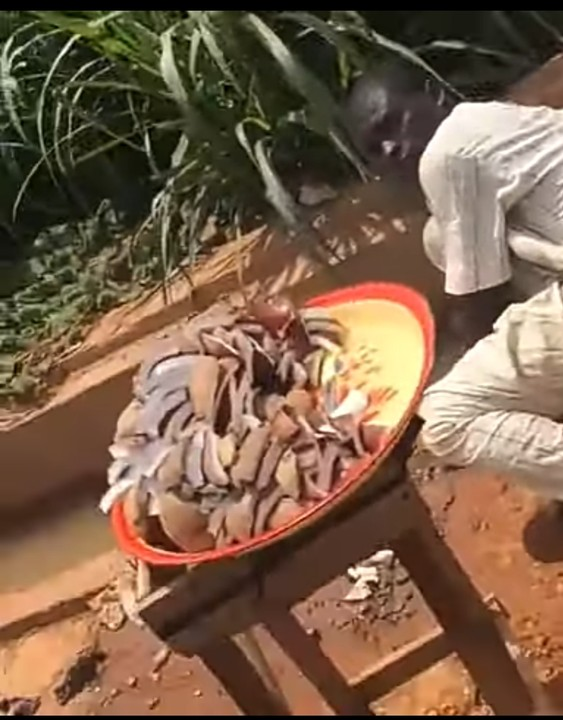 Coconut seller washing wares with gutter water