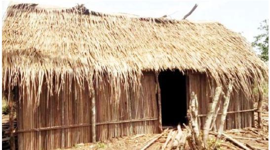 Herdsmen take over land in Lagos