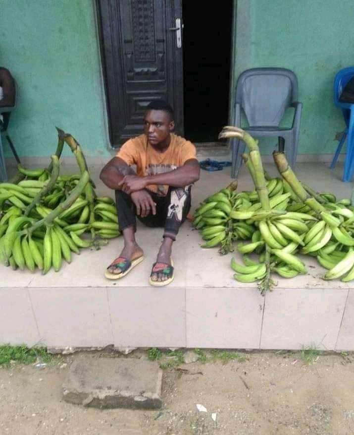 Plantain thief caught in Bayelsa
