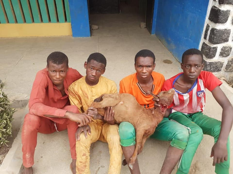 The teenagers arrested for stealing a goat