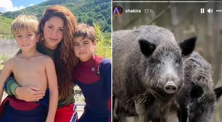 Shakira and sons
