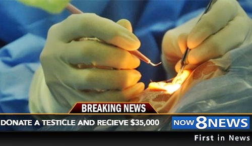 Donate a Testicle and Earn $35,000 - See How Much People ...